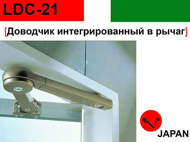 49815577_w640_h640_dovodchikldc21